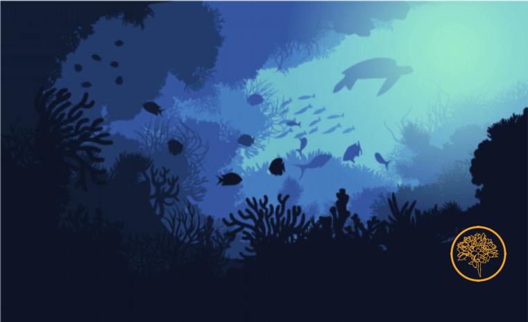 aula del mar conservacion litoral de malaga