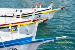 El cuidado del litoral y la preservacion marina en malaga foto
